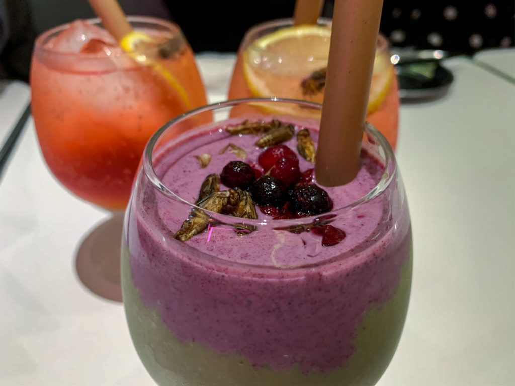 Insect smoothie