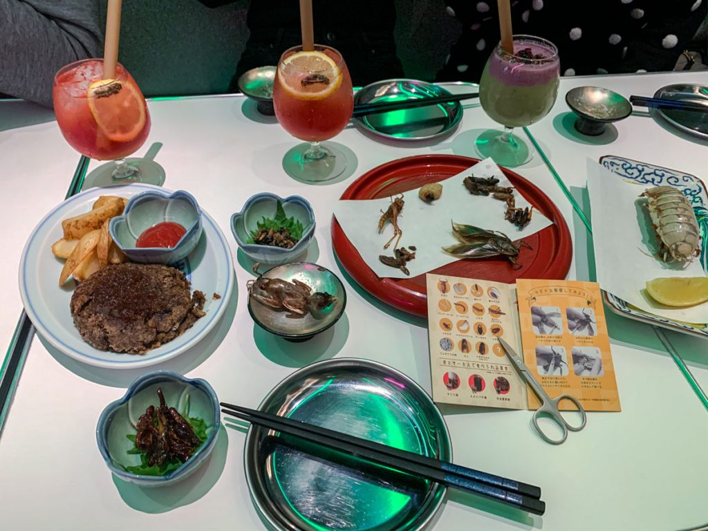 Table laid with various bug cuisines