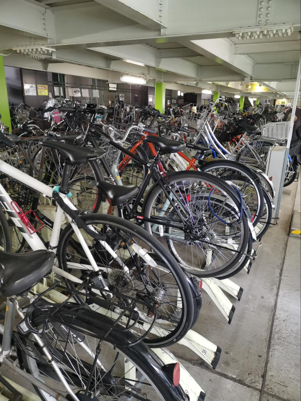Trying to find my Docomo bike in an ocean of bicycles