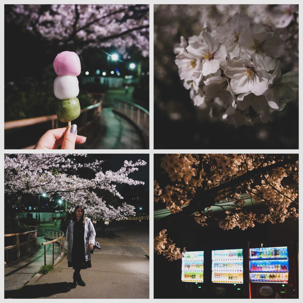 Hanami in the park after dark AFTER last train - no one is out...